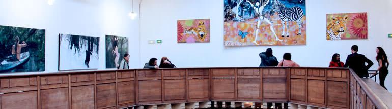 """Mastère professionnel en 1 an  """"Administration de projets culturels"""""""