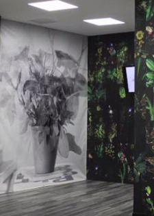 exposition murmures et visions département Amérique Latine